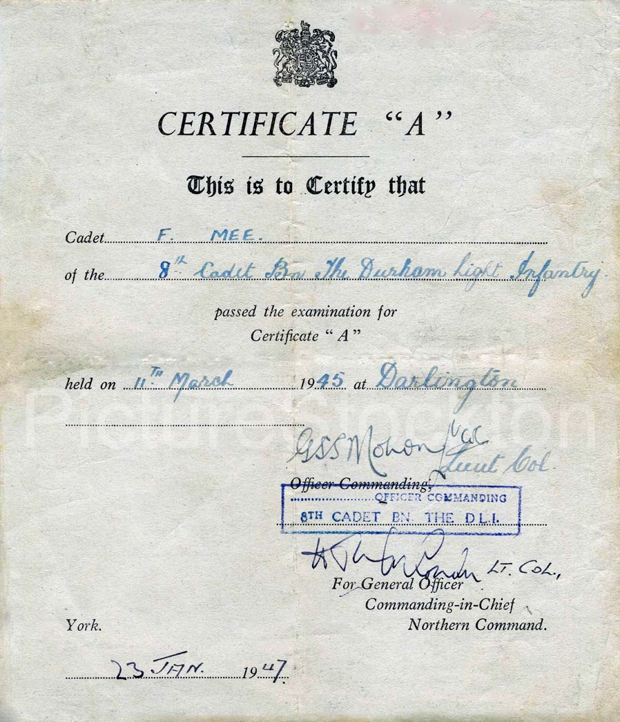 word 2013 sharestock certificate
